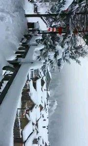 """双峰林场雪乡日景,位于黑龙江省牡丹江市大海林林业局境内、张广才岭中段,冬季雪期长达7个月,素有""""中国雪乡""""之称"""